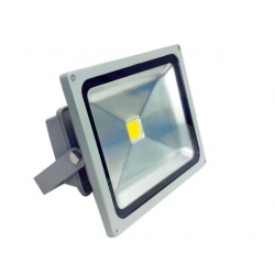 Foco de Led 20W Dia Quoled